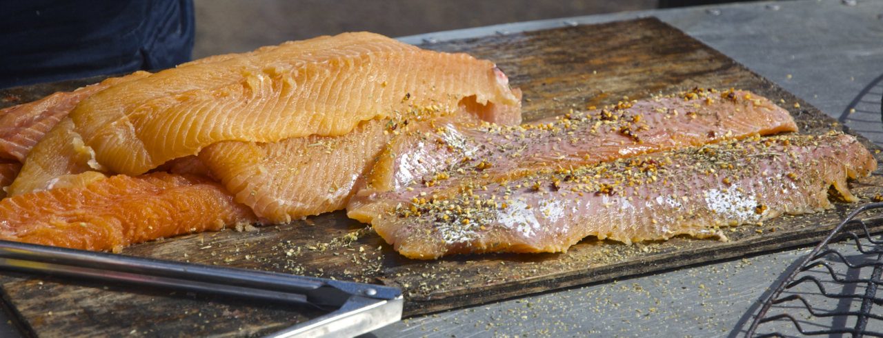The lake trout of great bear lake the best tasting fish for Best tasting fish