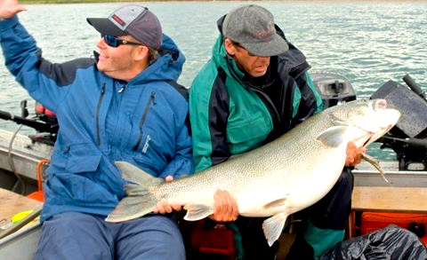 Paul's 70 pound Lake Trout
