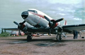 tree_river_dc-3