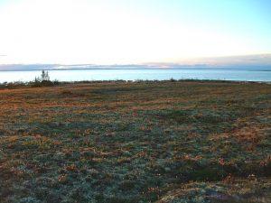 Tundra Aflame