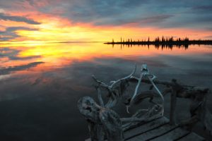 Great Bear Lake by Craig