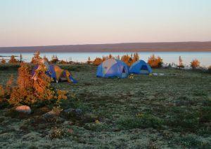 Ekka Island Campsite