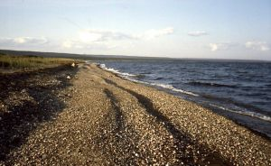 wild-west-shore