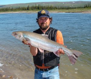 Arctic Char - Coppermine River