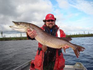 Whitefish River Pike