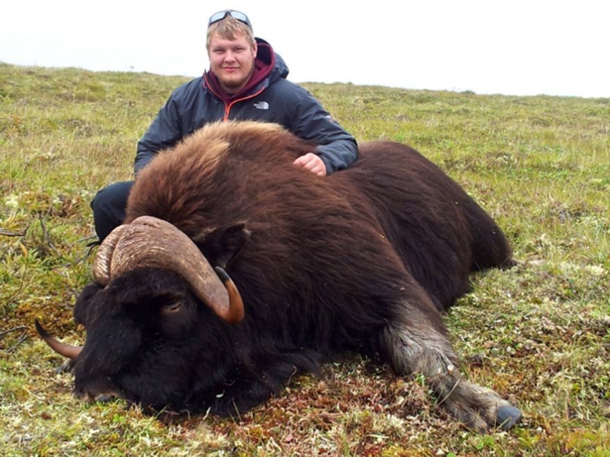 Mathew - Plummer's Lodge Muskox Hunt