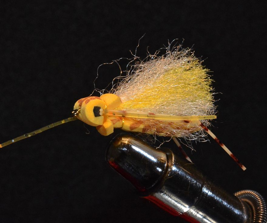 Foam Hopper or Adult Stone Fly